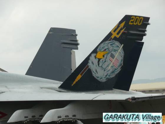 P20080505-P1030184