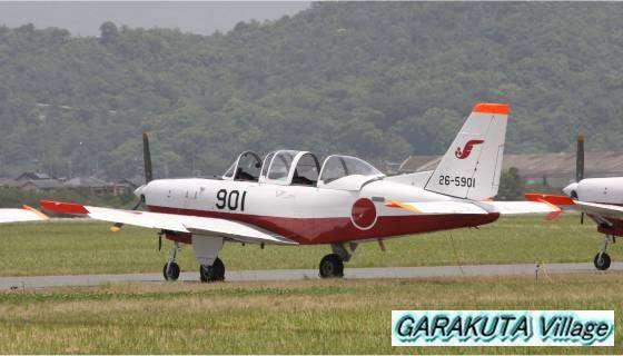 P20080601-IMG_0815-2