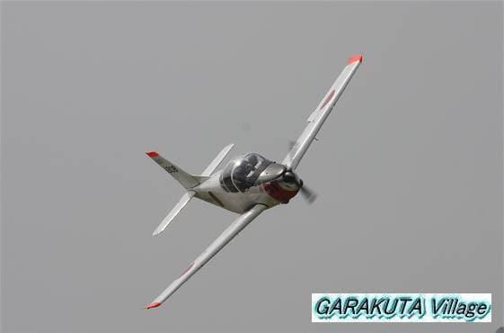 P20080601-IMG_1523-2