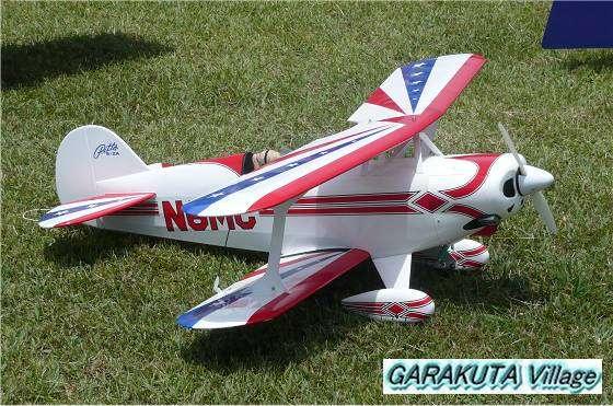 P20080601-P1030495-2