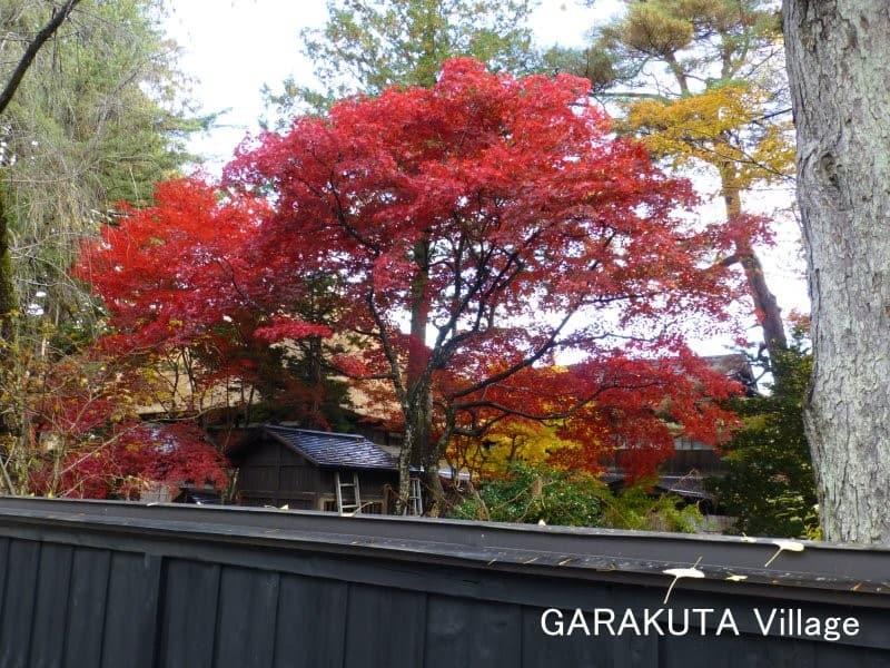 角館 (Kakunodate)(秋田県仙北市)・・・紅葉に堪能しました